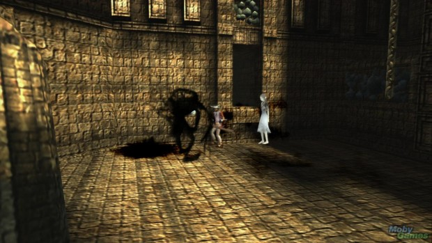 530902-ico-playstation-3-screenshot-battling-the-shadows-armed-with